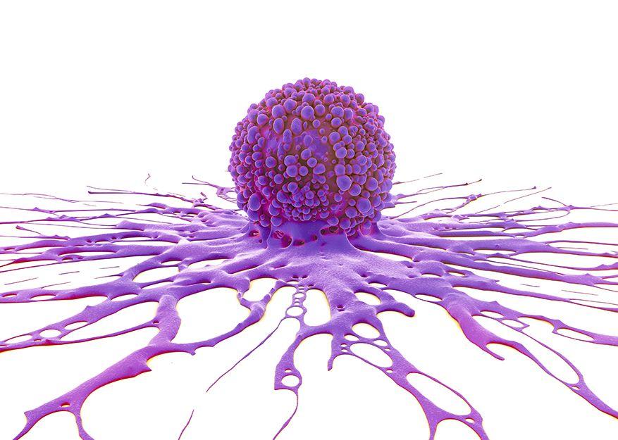 karpas izraisa papilomas viruss