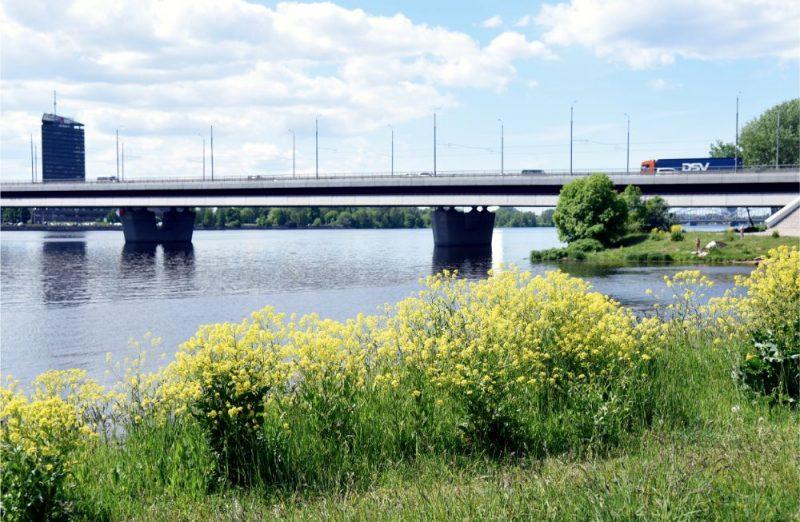 Kaspara Blūmaņa misija: Krogs vēsturiskā tilta pontonā   LA.LV